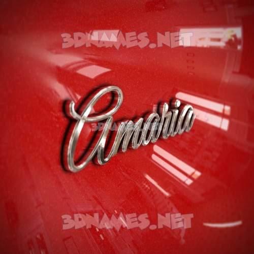 Car Paint 3D Name for amaria