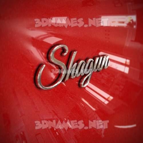 Car Paint 3D Name for shagun
