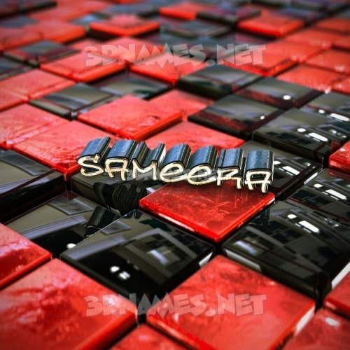 Red Checkered 3D Name for sameera