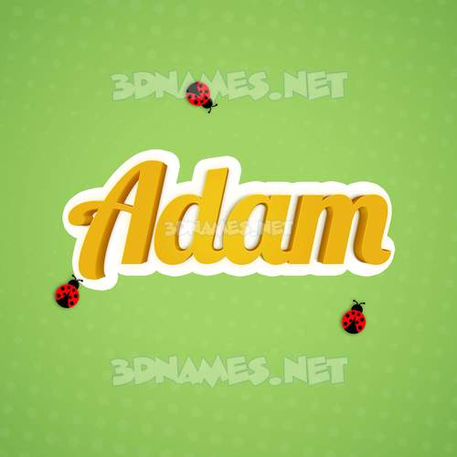 Ladybugs 3D Name for adam