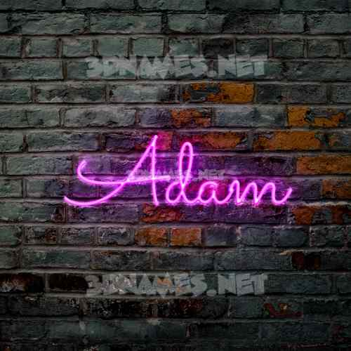 Pink Neon 3D Name for adam
